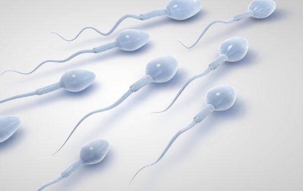 Fertility Benidorm Techniques